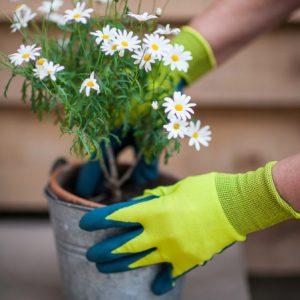 ویژگی های دستکش مناسب کشاورزی